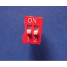 Dip Switch 2 Positions