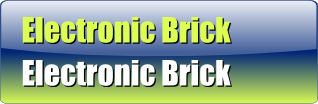 Electronic Brick